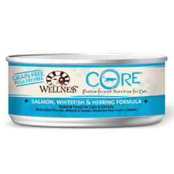 Wellness Core Fish Canned Cat Food