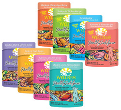 Wellness Healthy Indulgence - 24 count / 3 oz. pouches